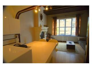 VAN HECKE: spacious apartment right in the city-center of Antwerp - Antwerp vacation rentals