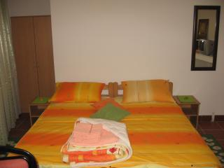 Apartments Petrovic Pancevo - Pancevo vacation rentals