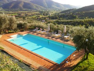Margarita Villa, Bright, Spacious Apartment  Pool - Castiglion Fiorentino vacation rentals