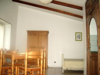 Lovely appartment first flore , garden and swimmin - Surgeres vacation rentals