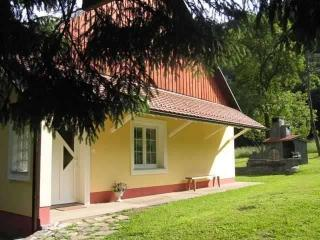 Apartma Vintgar (4+2)*** - Pohorje and surrounding - Slovenia vacation rentals
