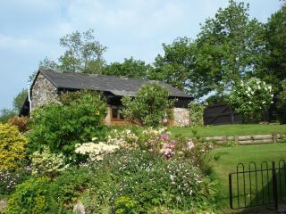 Self catering cottage Dartmoor - Dartmoor National Park vacation rentals