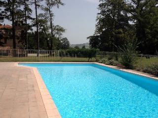 Chateau de Soules, St Ybars, Midi Pyrenees, France - Vieille-Toulouse vacation rentals
