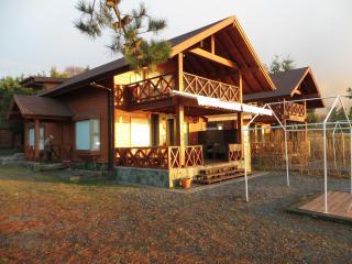 Casas nuevas orilla de playa  Lago Villarrica - Pucon vacation rentals