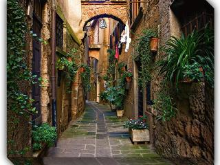 Orte -a beautiful medieval hilltown 35 min to Rome - Orte vacation rentals