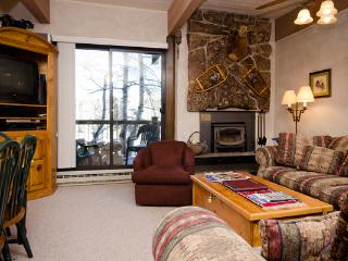 A Great Ski-in Ski-Out Condo - Steamboat Springs vacation rentals