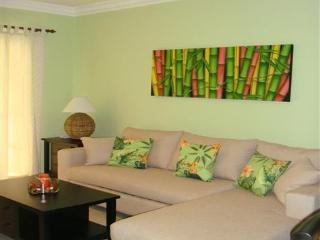 Punta Cana Bavaro Delightful & Comfortable 1BR Con - Bavaro vacation rentals