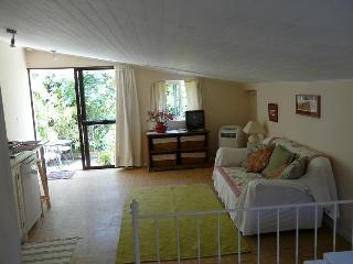 Casa Flora Loft Apartment - San Andres vacation rentals