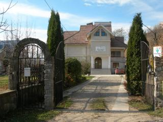 Ambiance Guesthouse - Alexandru Cel Bun vacation rentals