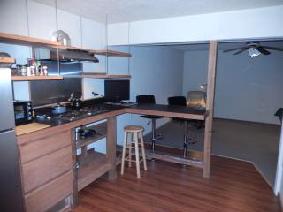 Deluxe Foothills Apartment (4 Hills) - Albuquerque vacation rentals