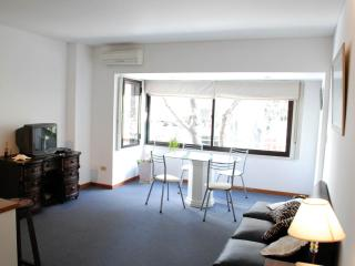 Spacious apartment in - Buenos Aires vacation rentals