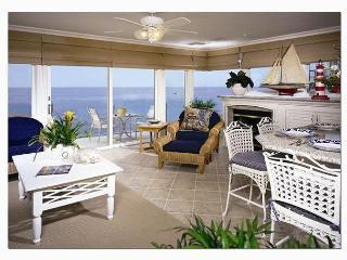 On the waters edge- 2 bdrm, best location, CLEAN. - Laguna Beach vacation rentals
