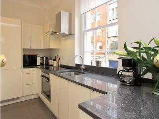 Mayfair - 1 Bedroom with A/C  (4445) - London vacation rentals