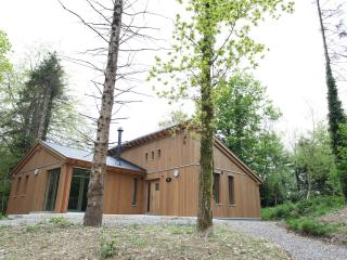 Ballyhoura Forest Luxury Homes Ireland We want you - County Limerick vacation rentals