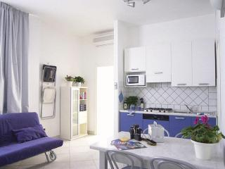 Great 1 Bedroom Tuscan Vacation Apartment - Piombino vacation rentals