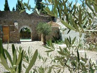 Luxury gites in village in heart of the Languedoc - Narbonne vacation rentals