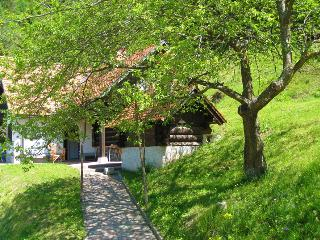 Romantic chalet in the countryside - Cerkno vacation rentals