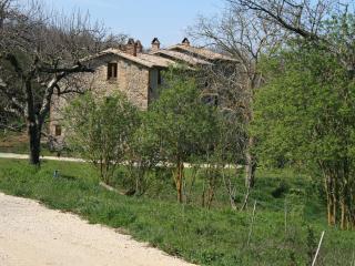 CASALE VIGNOLO, La Torre - Orvieto vacation rentals