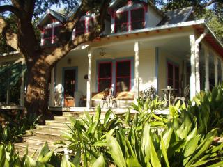ACL(3 blocks) Town Lake, Deep Eddy Pool, bus, cafe - Austin vacation rentals