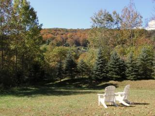 Luxury Vacation Home with babbling brook! - Eastern Vermont vacation rentals