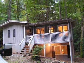 Belle Cottage In the - Pisgah Forest vacation rentals