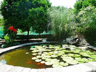 Family House Mozara - Slano - Room 3 - Slano vacation rentals