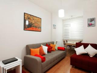 New Flat in the Heart of Cihangir - Istanbul vacation rentals