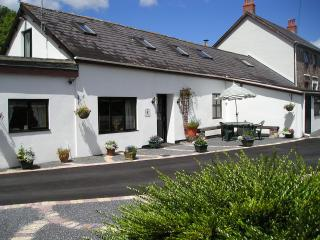 MAESACHDDU FARM COTTAGE - Carmarthen vacation rentals