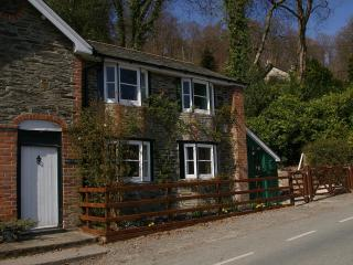 4* cosy Welsh cottage with valley views - Llanidloes vacation rentals