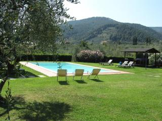 Casa Marisa - Wonderful villa in Lucca country sid - Tuscany vacation rentals