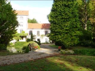Hosts' house and Wells-Being  Le MOULIN PAGE - Conflans-sur-Anille vacation rentals