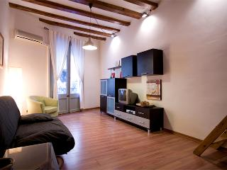 apartment  bohemian in center Barcelona (wifi) - Barcelona vacation rentals