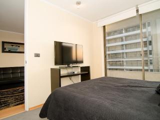 Luxury apartment in Bellavista! - Santiago vacation rentals