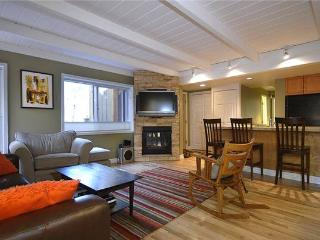 WILLOWS B1 - Snowmass Village vacation rentals