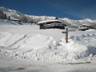 Ski Ball Chalet at Snowmass Village, Colorado - Snowmass Village vacation rentals