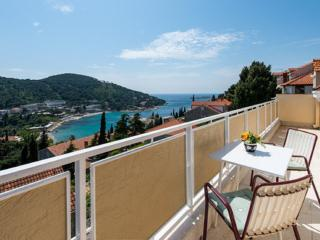 Apartments Mirjana - Apartment with balcony and sea view - Dubrovnik vacation rentals