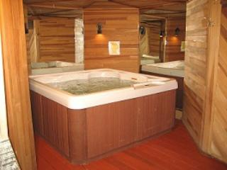 Minutes from Heavenly! Sleeps 12 + indoor hot tub - South Lake Tahoe vacation rentals