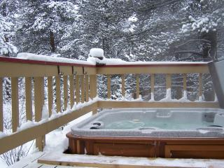 Moose Meadows Lodge in Breckenridge - Breckenridge vacation rentals