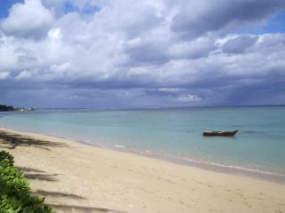 Punaluu Beach 1bd/1ba Condo, #401 - Punaluu vacation rentals
