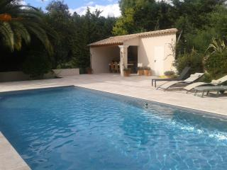 Lovely villa in beautiful village near Cannes - Bargemon vacation rentals