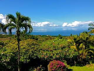 Maui Ocean Palms-Luxury  Wailea  Home wPool, Views - Wailea vacation rentals