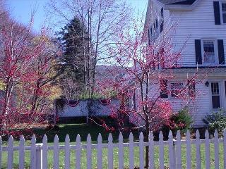 Charming Village- Great House - Housatonic vacation rentals