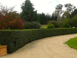Glen Waverly B & B Cottage And Alpacas - New South Wales vacation rentals