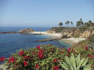 Stunning Contemporary Ocean view home near Beach - Laguna Beach vacation rentals