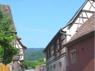 Gite Colmar - Alsace vacation rentals