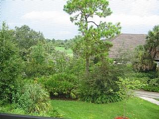 Wild Pines - Bonita Bay A-303 - Bonita Springs vacation rentals