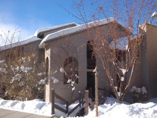 Beautiful Condo with King Beds - Steamboat Springs vacation rentals