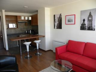 1 bedroom apartment, Park view and Bellavista - Santiago vacation rentals