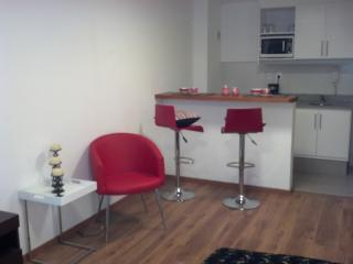 Fantastic apt in the heart of Montevideo ! - Montevideo vacation rentals