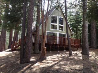 3 bedroom/ 2 bath South Tahoe quiet forest setting - Twin Bridges vacation rentals